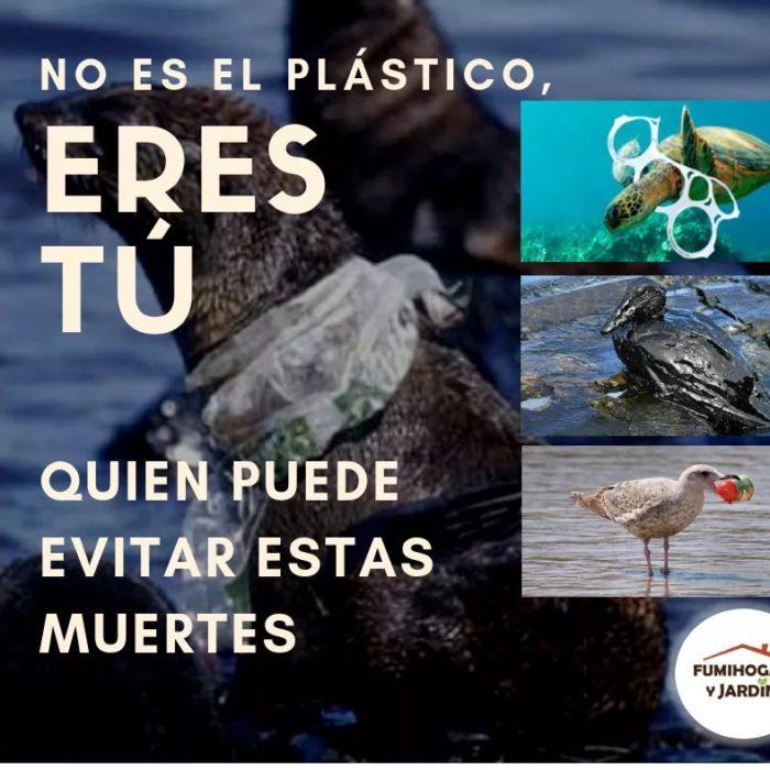 sostenibilidad6